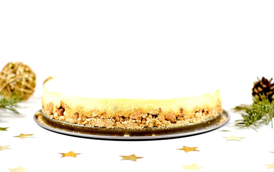 cheesecake-au-citron-4
