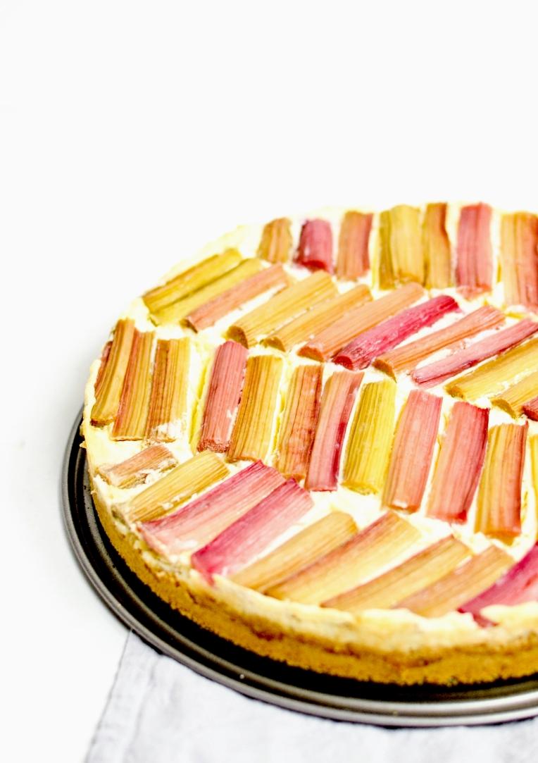 cheescake rhubarbe 1