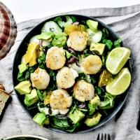 Salade d'hiver aux noix de Saint-Jacques - La pêche responsable avec Poiscaille